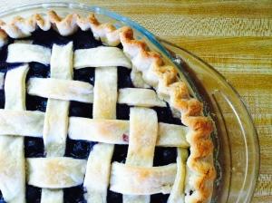 Protest Pie